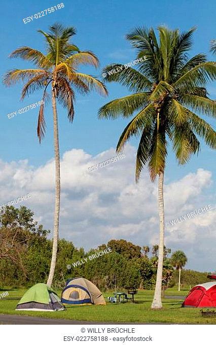 Campingin den Everglades