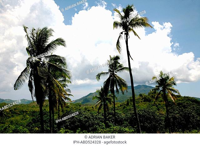 Philippines Palawan General Typical mountain scenery
