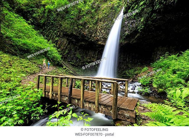 USA, Oregon, Multnomah County, Columbia River Gorge, Latourell Falls, wooden bridge