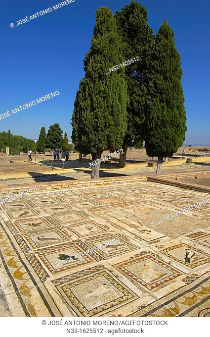 Ruins of the Roman city of Italica, Santiponce, Sevilla province, Andalusia, Spain, Europe