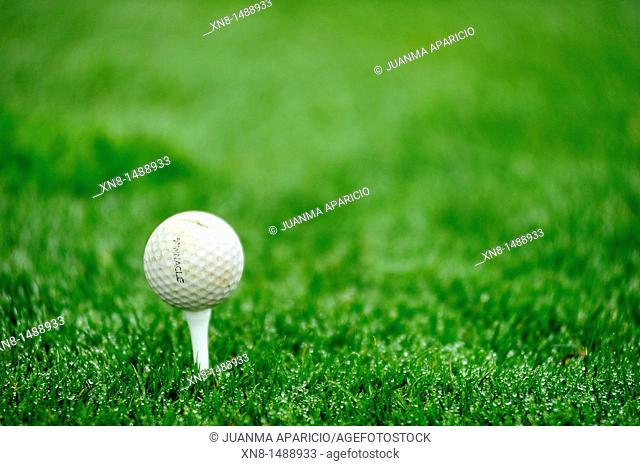 Close up of a golf ball resting on tee on grass