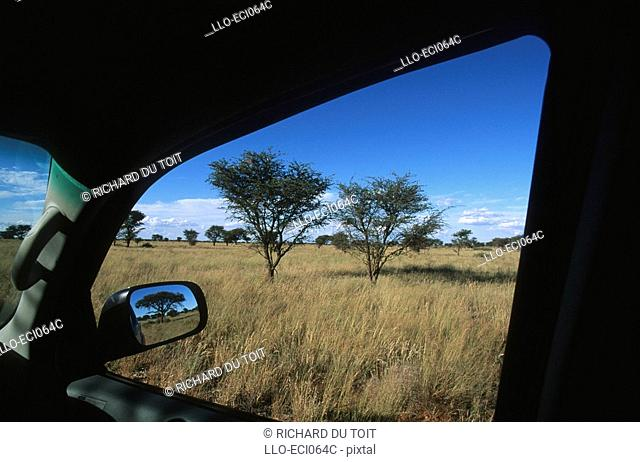 A View of the Bush Through an Open Car Window  Vaalbos National Park, Northern Cape Province, South Africa