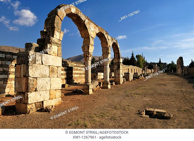 antique Umayyad ruins at the archeological site of Anjar, Unesco World Heritage Site, Bekaa Valley, Lebanon, Middle East, West Asia