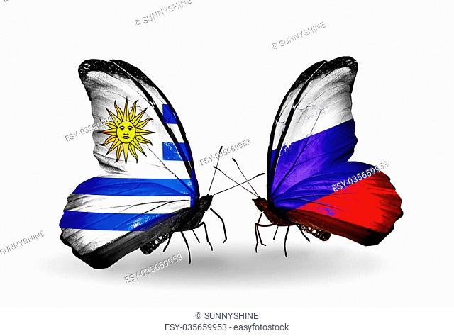 Two butterflies with flags on wings as symbol of relations Uruguay and Russia