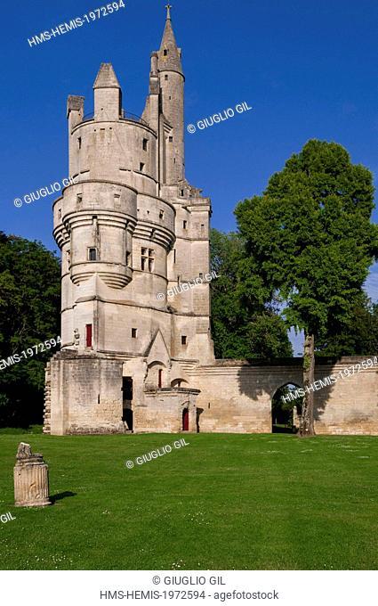 France, Aisne, Septmonts, the Donjon