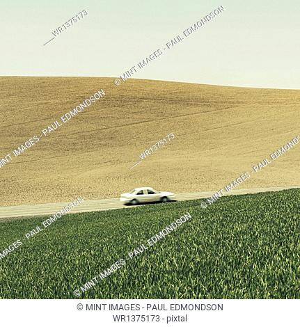 A car driving on am uphill slope, surrounded by farmland and lush, green fields of wheat, near Pullman, Washington