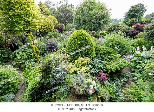 A garden bursts with life and growth, Richmond, Yorkshire , UK