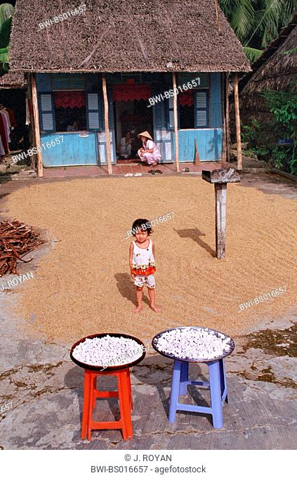 child in front of house, all along the south of Vietnam, by the road, seeds get dry under the sun, covering every inch of free land, Vietnam