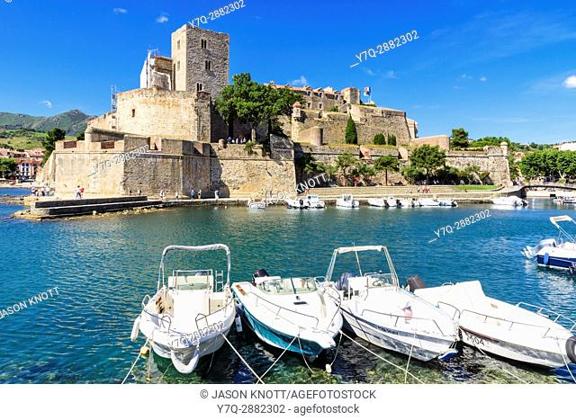 The Château Royal castle overlooking the small harbour of Collioure, Côte Vermeille, Céret, Pyrénées-Orientales, Occitanie, France