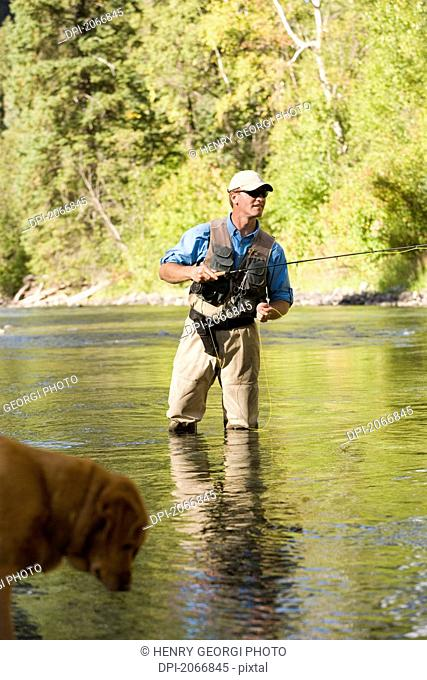 Fly-Fishing Guide, Russ Trand, Fly-Fishing On Tributary Of Elk River Near Fernie, Elk Valley, East Kootenays, British Columbia, Canada