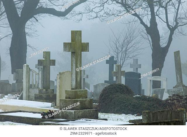 Foggy winter day at a cemetery in Brighton, East Sussex, England, United Kingdom