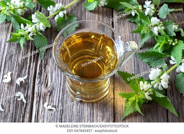 A cup of white dead-nettle tea with fresh blooming plant on a rustic background