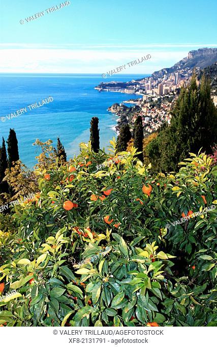 The medieval village of Roquebrune, Alpes-Maritimes, French Riviera, Côte d'Azur, Provence-Alpes-Côte d'Azur, France