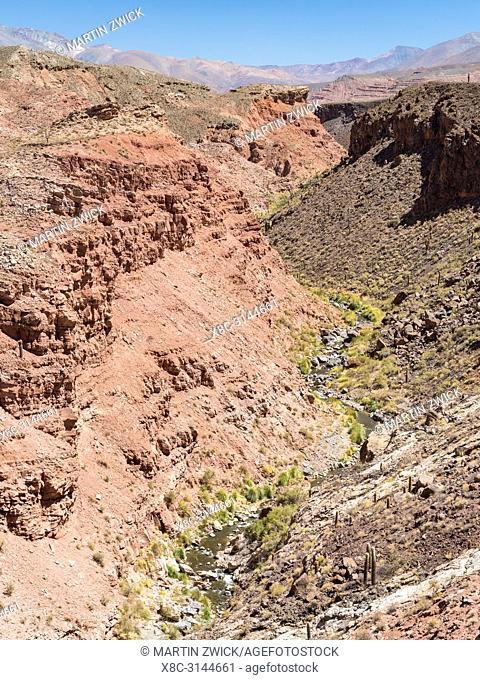 Canyon of Rio Calchaqui at Puente del Diablo. The Altiplano in Argentina, landscape along RN 40 near Mtn. Pass Abra del Acay (4895m)