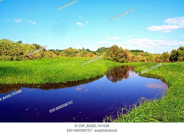 small river on summer field