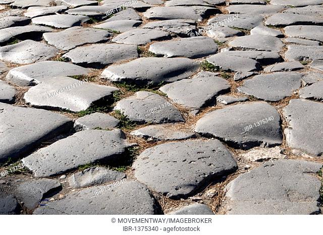 Pavement in the Forum Romanum, Rome, Italy, Europe