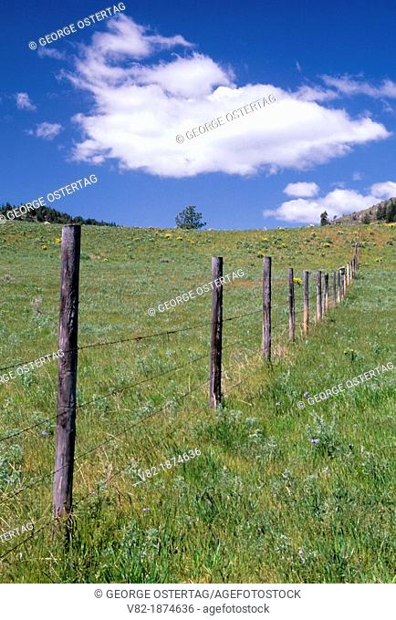 Ranch fence on North Star Rd, Okanogan County, Washington