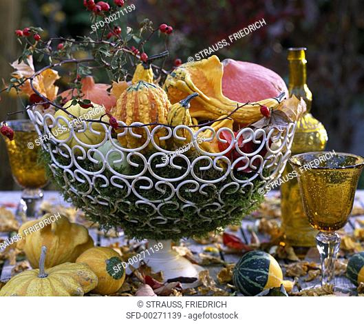 Ornamental gourds and rose hips in metal basket