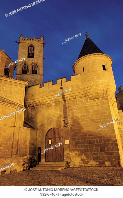 Olite castle at nith. Navarra, Spain