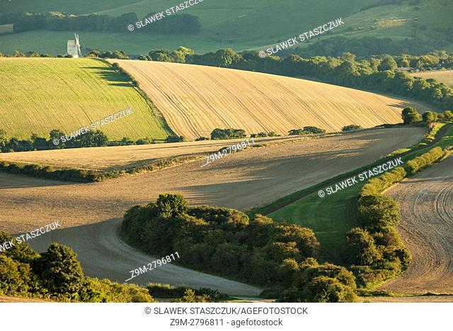 Autumn afternoon in South Downs National Park, East Sussex, England
