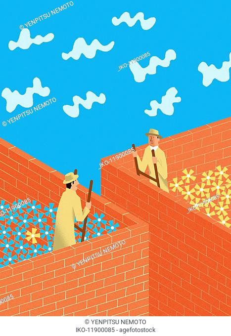 Men face to face on ladders peering over brick walls containing contrasting flowers