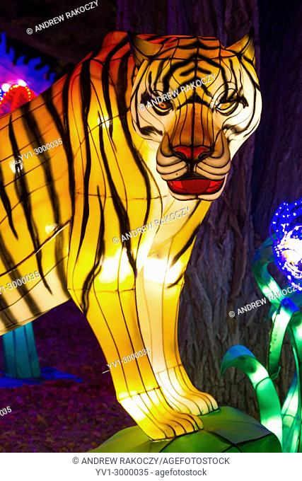 Chinese Lantern Festival to celebrate the Chinese New Year Tiger lantern