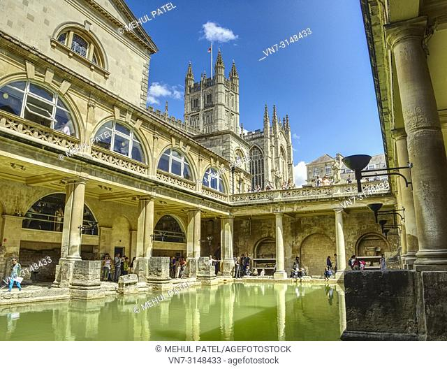 The Great Bath of the Roman Baths with Bath Abbey towering above the Baths, Bath, Somerset, England, UK. The Great Bath is the largest pool in the Roman Baths