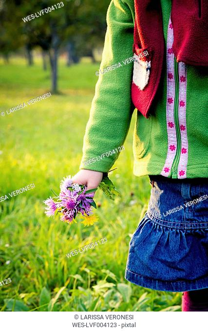 Germany, Baden-Wuerttemberg, little girl with picked flowers on a meadow, close-up