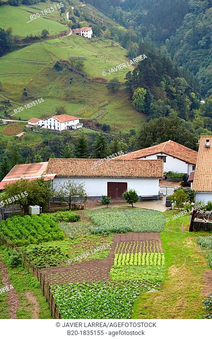 Farmhouses, Fog, Eibar, Gipuzkoa, Basque Country, Spain