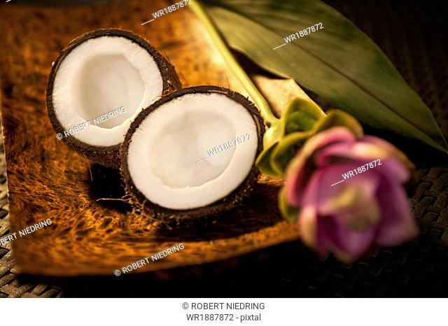 Coconut And Flower