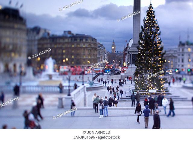 Trafalgar Square at Christmas, London, England