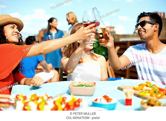 Male and female friends making a toast at rooftop barbecue
