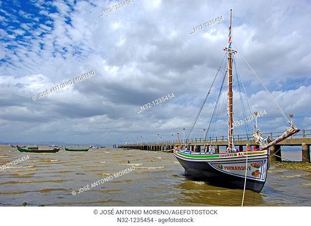 Alcochete  Tejo River, River Tagus, Setubal district  Lisbon coast  Portugal  Europe