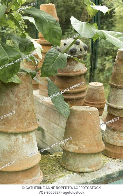 Vintage terracotta flower pot stacks and cobwebs in a potting shed, Frampton on Severn, the Cotswolds, England