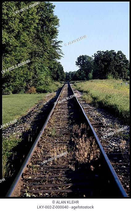 Empty railroad tracks leading into woods