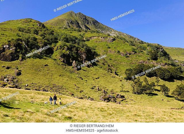 France, Cantal, Parc Naturel Regional des Volcans d'Auvergne Regional Nature Park of the Volcanoes of Auvergne, Monts du Cantal