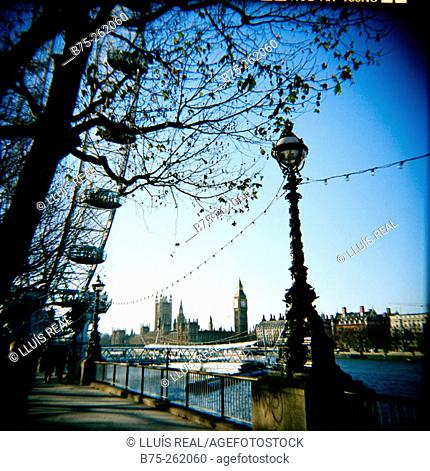 London Eye with the Big Ben at the background. South Bank. London. England