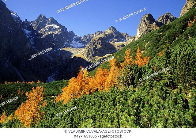 View of the valley 'Dolina Zeleneho plesa' in High Tatras, Slovakia