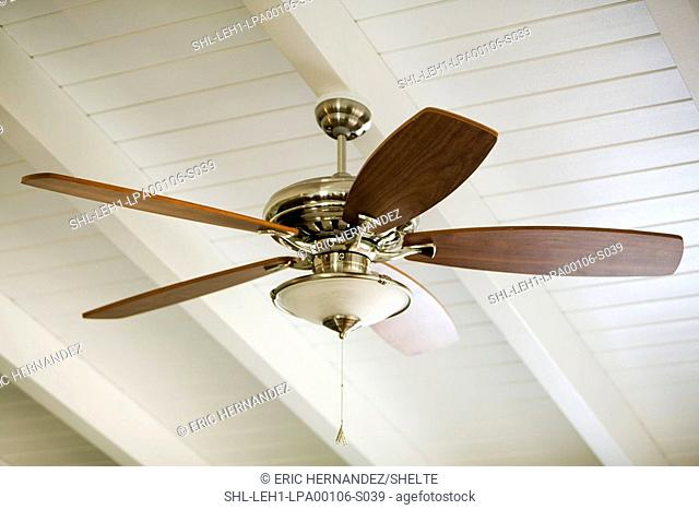 Ceiling fan mounted on a white beamed ceiling
