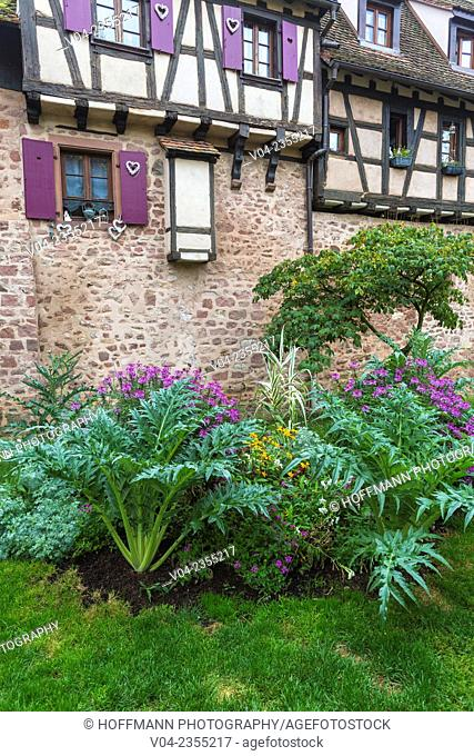 Mediaeval ramparts in the historic village of Riquewihr, Alsace, France, Europe