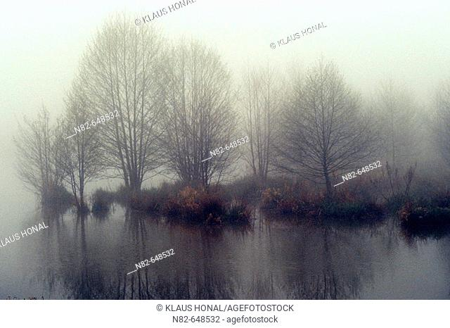 Reflections in foggy morning at the lake - Altmuehlsee, Bavaria/Germany