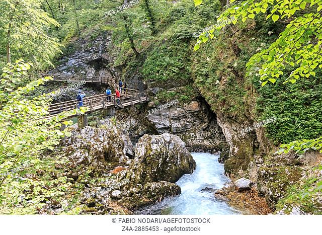 Tourists walking inside the Vintgar Gorge on a wooden path between Bled Lake and Bohinj Lake in Slovenia, Europe