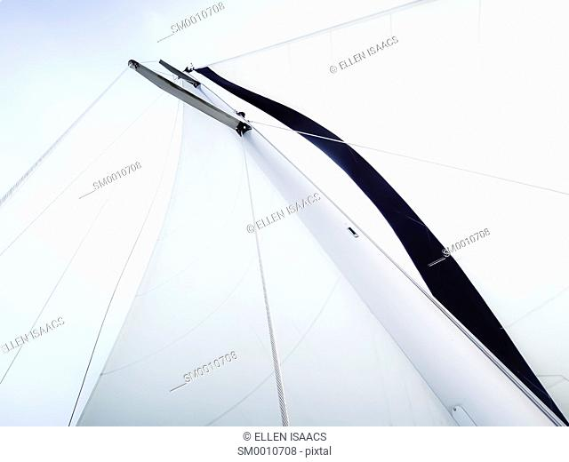Looking up at the beautiful curved lines of the sails on a sailboat with crisp white mainsail and genoa