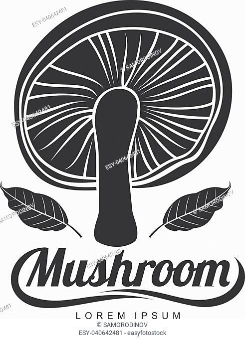 Mushroom logo templates for your design. Autumn, fallen leaves of trees, dry grass. Mushroom badges, labels, brochures, business templates