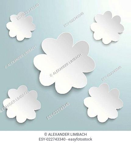 5 White Shamrocks