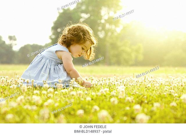 Caucasian girl picking flowers in field