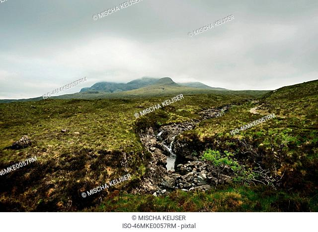 Mossy rocks in rural landscape