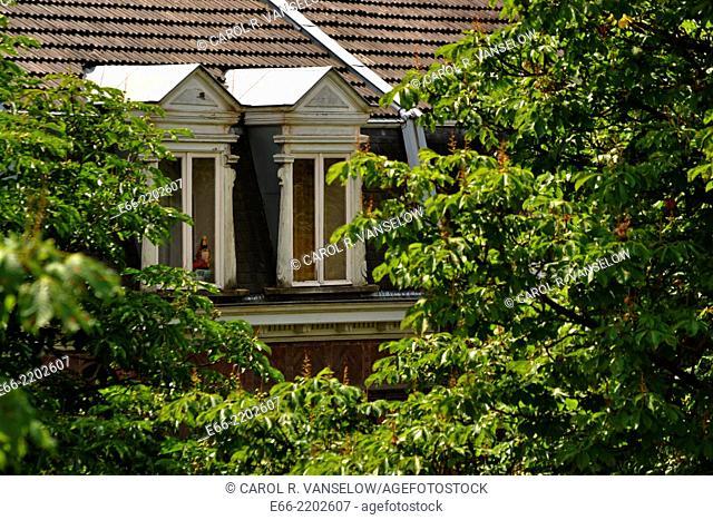 Windows on top floor of row house in St Pieter neighbourhood of Maastricht. Windows seen through trees