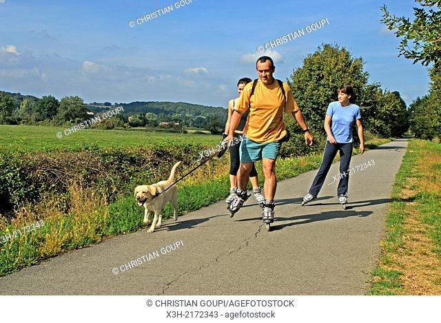 family roller skating on a cycle track, Saone et Loire department, Burgundy region, France, Europe