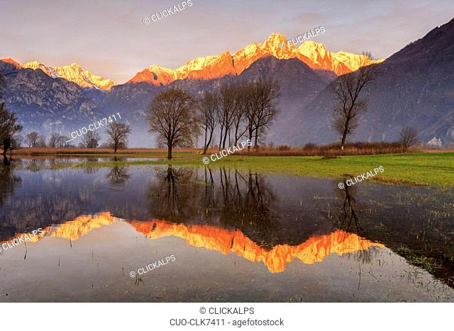 Natural reserve of Pian di Spagna flooded with snowy peaks reflected in the water at sunset Valtellina Lombardy, Italy, Europe